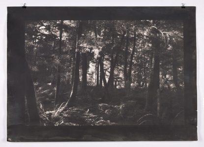 "Many Chomseng, ""Origins"", Vandyke Tonal Print, 36"" x 48"", 2018"