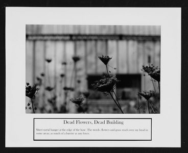 "Ryan Evanoff, ""Dead Flowers, Dead Building,"" Black and white photograph, 8 1/2"" x 10 1/2"", 2006"