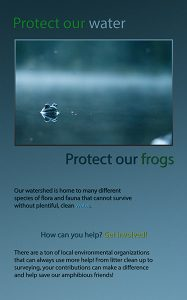 "Tyler Cunningham, ""Frogs are Friends"",Inkjet Print on Fine Art Print Poster,39.25"" x 27.5 "", 2020"