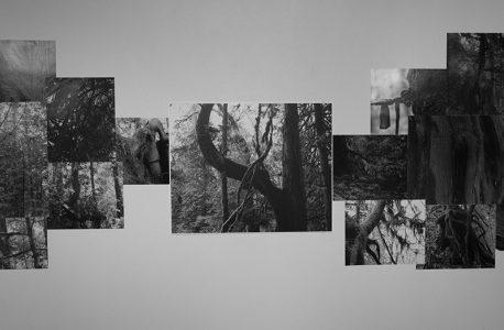 "Deb Silver, ""Their Words Echo Through My Core"", Silver Gelatin and RC prints, 2018"